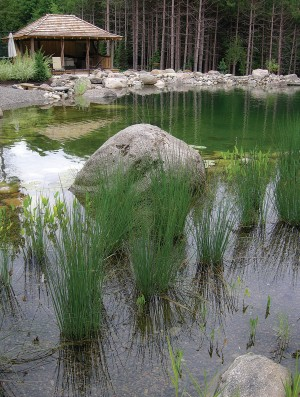 This swimming pond, designed by David Warburton, uses the natural filtering properties of rocks and plants to keep the water clear and free of algae. Photo by Rosemary Hasner / Black Dog Creative Arts.