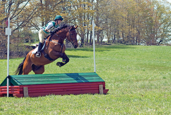 A young rider takes a jump during a recent competition at Equus 3D. Photo by Kate Hawthorne.