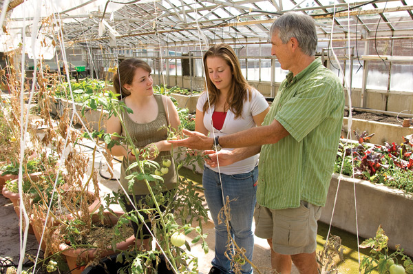 Teacher Jamie Richards takes Chelsea and Shannon on a tour of the school greenhouse where his geography students grow some of the vegetables the students use as ingredients in the culinary creations they then sell to the student lunch crowd.