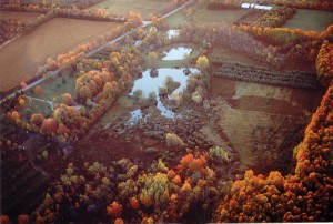 """James Dick proposes a controversial """"grout curtain"""" to stop the quarry from draining wetlands like these that abut the quarry site across the road on Winston Churchill Boulevard. Photo Courtesy Coalition Of Concerned Citizens."""