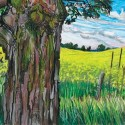 "Hallie Watson - Canola Field Maple Tree, 27.5"" x 19.5"""