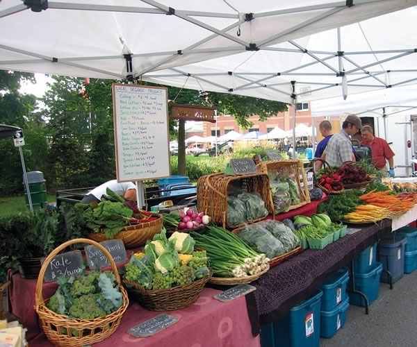 Caledon's Whole Village produce is available at the Orangeville Farmers' Market on summer Saturdays. Photo by Rosemary Hasner.