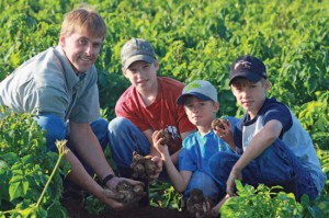 Potato farmer David Vander Zaag inspects the crop with three of his four sons: Eric, 13, Daniel, 7, and Ryan, 1o. The third-generation potato farmer moved to his 1,ooo acre farm (next photo) in Melancthon from Alliston, enticed by the perfect texture of the Honeywood silt loam.