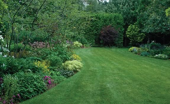 The Nephew garden : Graceful curves, airily pruned shrubs and multi-hued greenery contribute a sense of depth and mystery to the perennial borders. Photo Rosemary Hasner