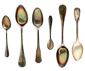 The Spoons at Dufferin County Museum