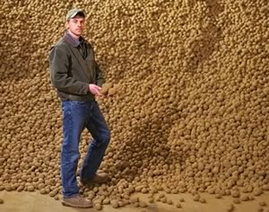 Dave Vander Zaag on his Melancthon potato farm. Photo Jason Van Bruggen.