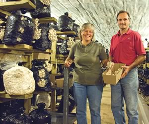 Julie and Ralph Baumlisberger have been in the mushroom business for five years and now produce about 1.5 tonnes of the edible fungi each week. Photo by Pete Paterson.