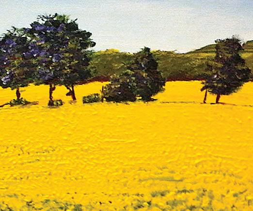 Canola, Michele Johnston. Photo by Sandiwongartist.Com.