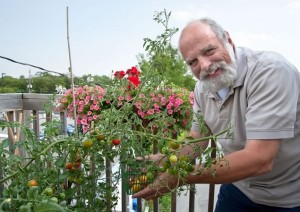 Writer Tony Reynolds happily gave up lawn mowing and snow shovelling, but retains a gardener's pride in the tomatoes and other vegetables and herbs he and his wife Susan Reynolds grow on the spacious second-floor deck of their Broadway apartment. Photo by Rosemary Hasner.