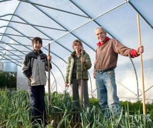 Aidan, Nancy and Jamie harvest the leek crop. Photo by Rosemary Hasner.