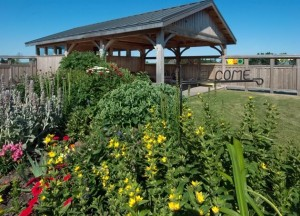 The sensory garden at Community Living Dufferin's facility west of Orangeville (above) includes an art exhibit and offers an oasis away from the sometimes noisy indoor environment. Photo by Rosemary Hasner / Black Dog Creative Arts.