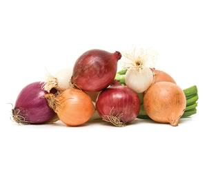 The onion (Allium cepa) is the most widely cultivated species of the genus Allium. It is most frequently a biennial or a perennial, but is usually treated as an annual and harvested in its first growing season.