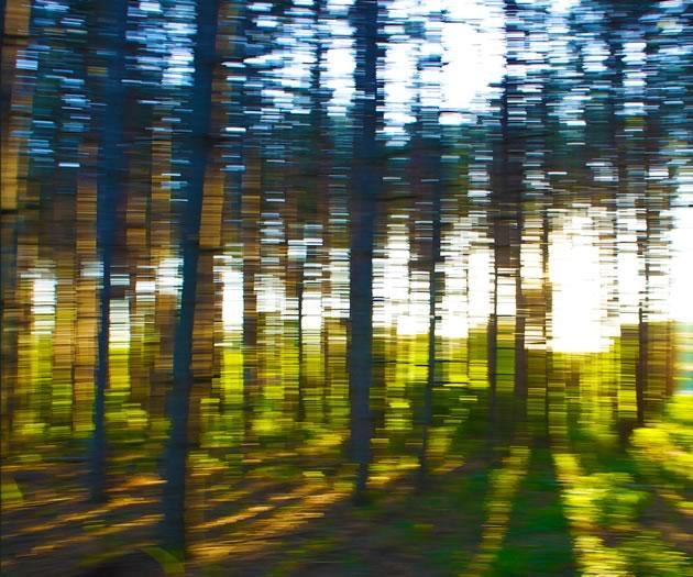 "Maria Drasilov ~ Shimmer photograph 20 x 24"""