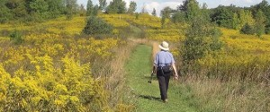 A hiker enjoys a hike along a high path amid the golden fields of late summer. Photo by Gary Hall.