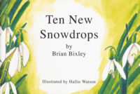 Ten New Snowdrops
