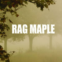 Rag Maple