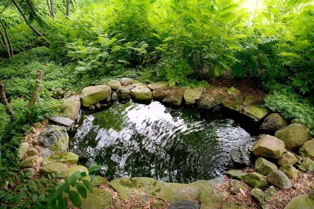 garden_MDubbeld05