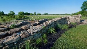 The next adventureA new stone wall forms the backbone of Misha's latest project. Her goal is to deploy a new landscape language, one uncommon to Southern Ontario. Hardy grasses, cedar and native sumac are among the plantings. Photo by Rosemary Hasner / Black Dog Creative Arts.