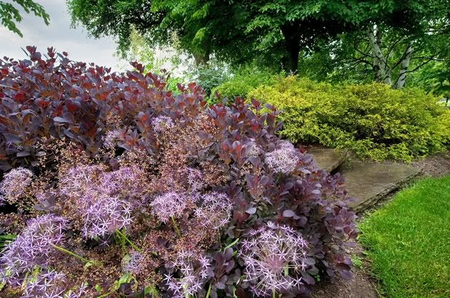 garden_MDubbeld40