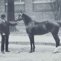 Harry Riddell with a blood stock horse, c.1910. Dufferin County Museum & Archives, P-1868