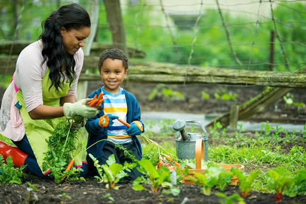 Grow your snacks in your backyard or a community garden.