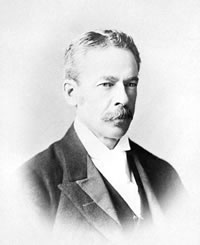 D'Alton McCarthy MP (Cons.) 1876–78
