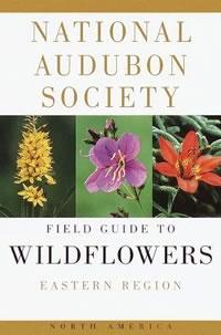 forage_Audubon