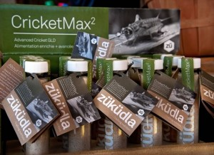 Gut loading is a practice whereby an animal's prey is fed the nutrients needed by the animal that eats the prey. The result is CricketMax2, one of Züküdla's hottest products. Photo by Rosemary Hasner / Black Dog Creative Arts.