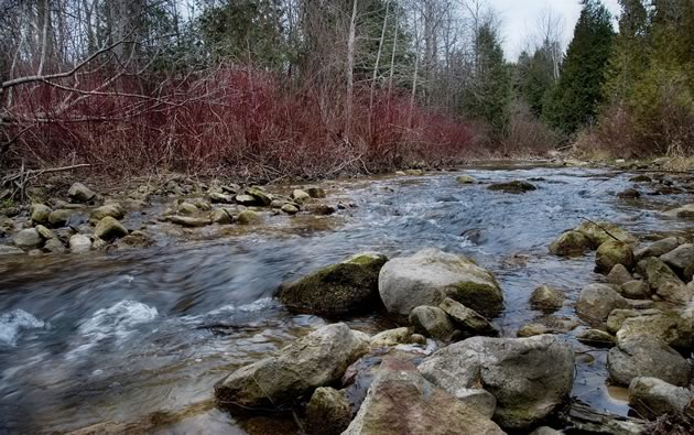 Rushing water and rocky rills on the Nottawasaga River along Hockley Road. Photo by Rosemary Hasner / Black Dog Creative Arts.