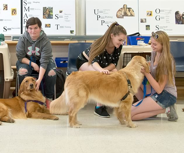 In the classroom at Humberview during a training session with the dogs. Photo by Pete Paterson.