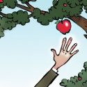 Who has not plucked an apple from a hedgerow? Just one bite, and if it is not sweet enough… a few more strides and you may have an array of alternatives. Illustration by Anthony Jenkins.