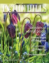 2017 cover of In the Hills magazine