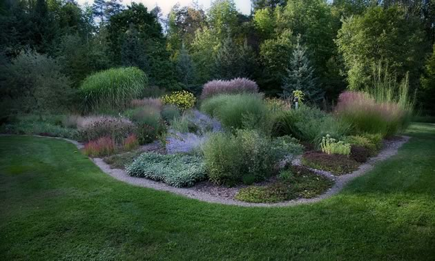 This grass garden is filled with varieties of Miscanthus and Panicum that sway in the breeze well through autumn. Photo by Rosemary Hasner / Black Dog Creative Arts.