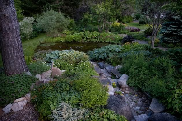 A rock stream bed leading to one of the ponds. Photo by Rosemary Hasner / Black Dog Creative Arts.