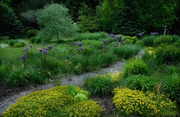 In spring, Liz Knowles' gardens burst into life. Photo by Rosemary Hasner / Black Dog Creative Arts.