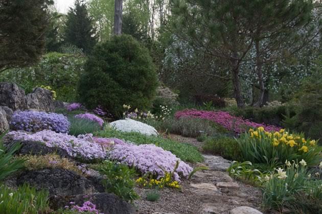Rock garden, Spring copy