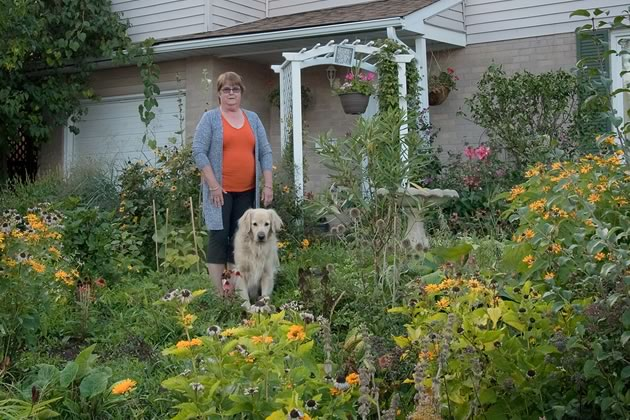 Ahead of their time, when Larry and Gail Hooper replaced their large front lawn with a perennial garden 15 years ago, they sought town council approval. Photo by Rosemary Hasner / Black Dog Creative Arts.