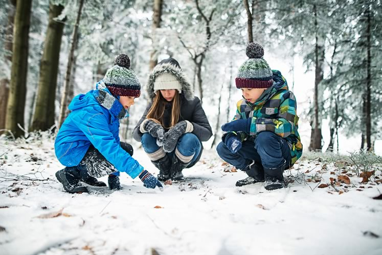 Take kids on a walk with purpose and look for cottontail tracks. Photo by Imgorthand / Istockphoto.