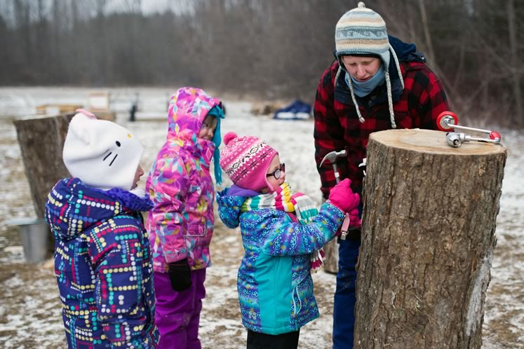 Visiting a sugar bush, such as this one at Island Lake Conservation Area, is one of winter's last pleasures. Photo by James MacDonald.