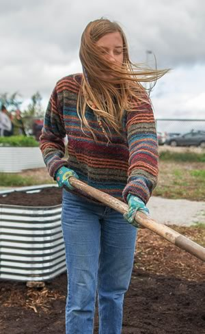 Raven Lacombe preps a vegetable bed for winter last October. Photo by James MacDonald.