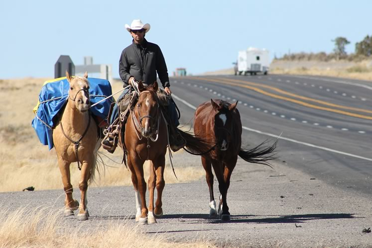 Filipe on Bruiser, with Frenchie and Texas (Dude's predecessor) on a highway in northern New Mexico. Courtesy Filipe Leite.