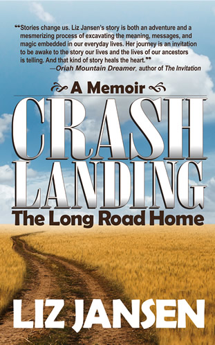 Crash Landing The Long Road Home by Liz Jansen