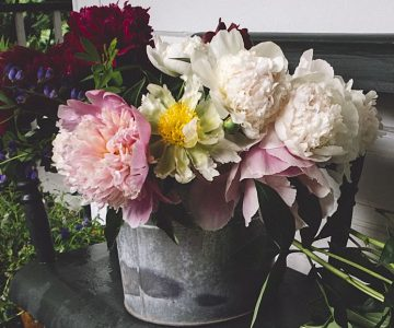 A charming bouquet showcases several luscious peony varieties. Photo by Tessa Angus.