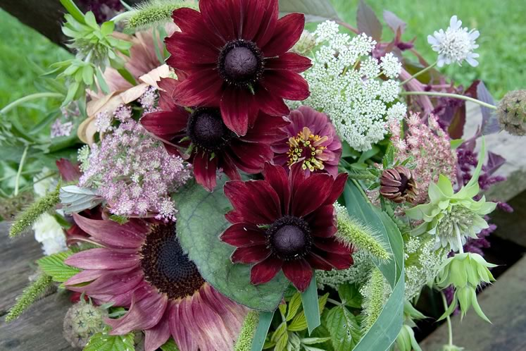 An autumn market bouquet includes zinnias, coneflowers, Queen Anne's Lace, dusty miller and a pink sunflower, along with other delights. Photo by Rosemary Hasner / Black Dog Creative Arts.