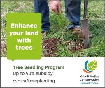 Credit Valley Conservation Tree Planting