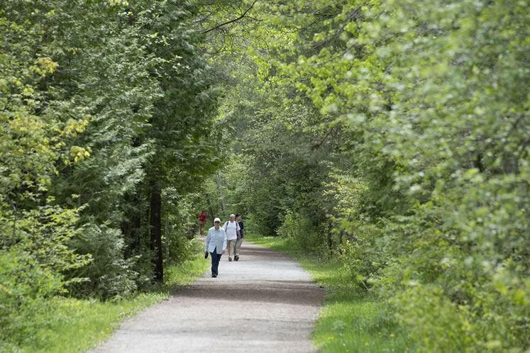 Constructed on the former tracks of North-Western Railway, Caledon Trailway covers 35 scenic kilometres from Terra Cotta to Highway 9. Photo by Pete Paterson.