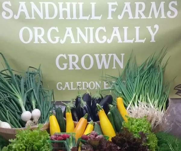 Sandhill Farms