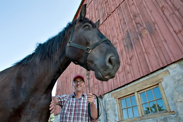 Jason Huck of Hockley Valley Farm with one of his Percheron horses. Photo by Rosemary Hasner / Black Dog Creative Arts.
