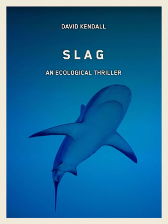 Slag An Ecological Thriller by David Kendall