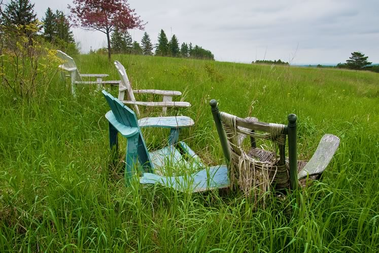 A collection of aging Muskoka chairs blends into the meadow, providing a spot for rest and reflection. Photo by Rosemary Hasner / Black Dog Creative Arts.